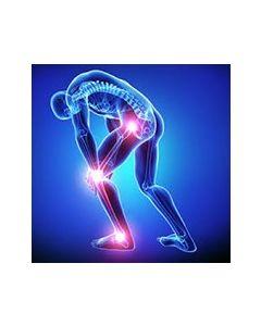 Arthritis Combo